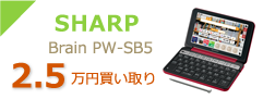 SHARP Brain PW-SB5